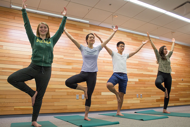 Four students in tree post during a yoga class at the Duck Nest.